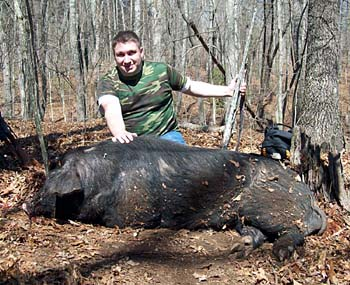 Tennessee Boar Hunt