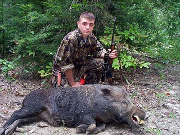 Tennessee Boar Hunting